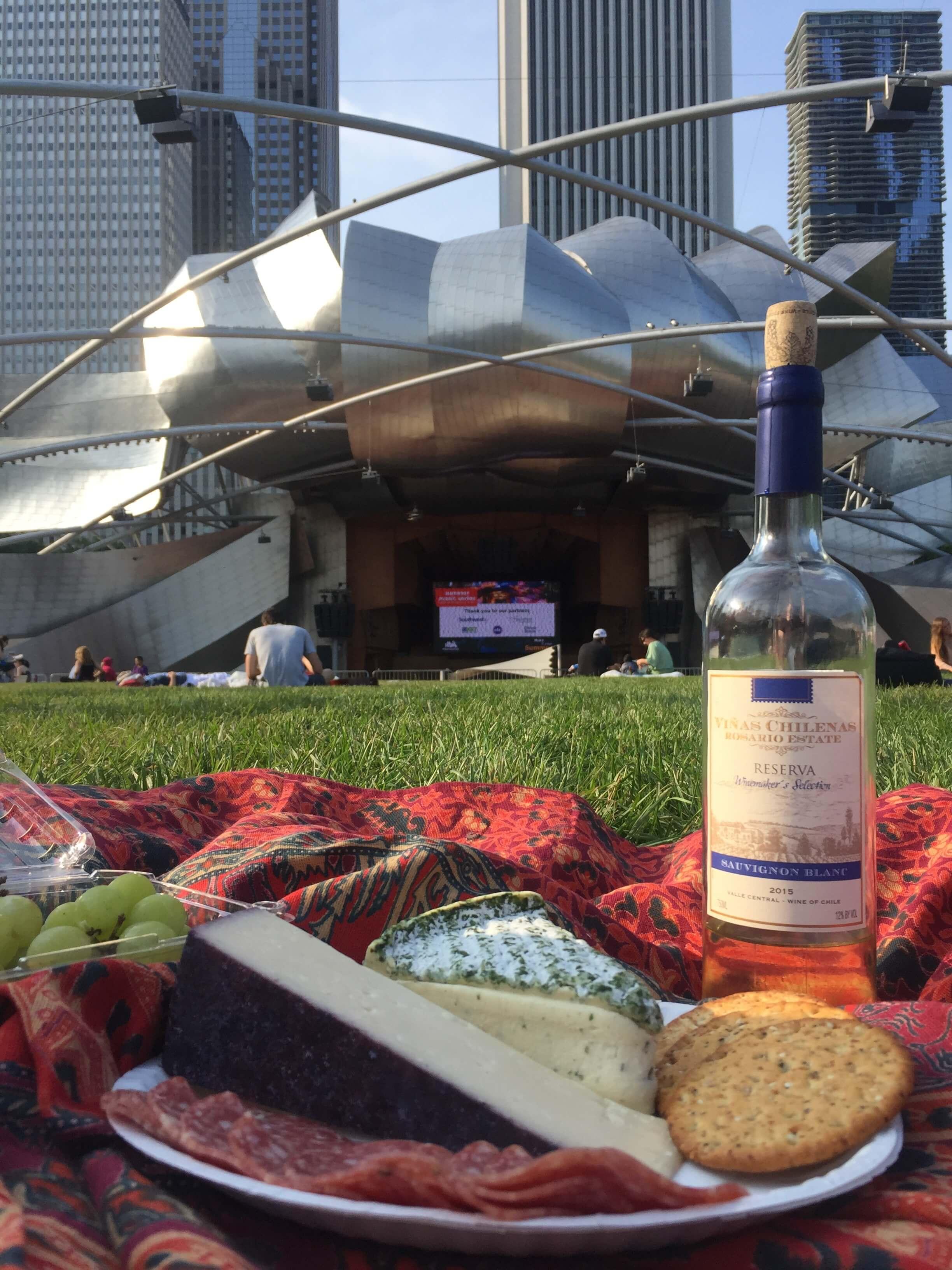 Chicago-Concert-Park
