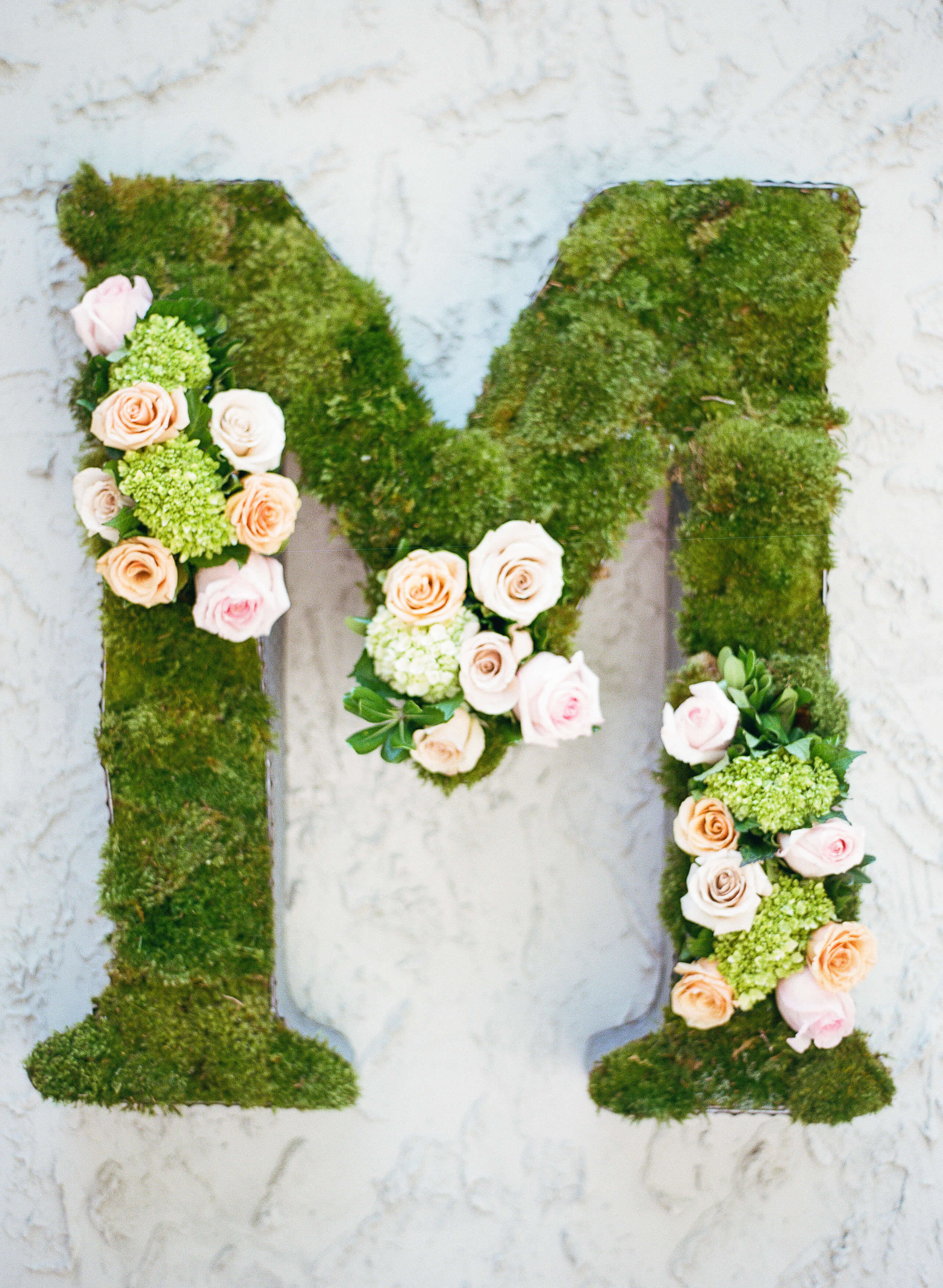 garden_initial_with_roses