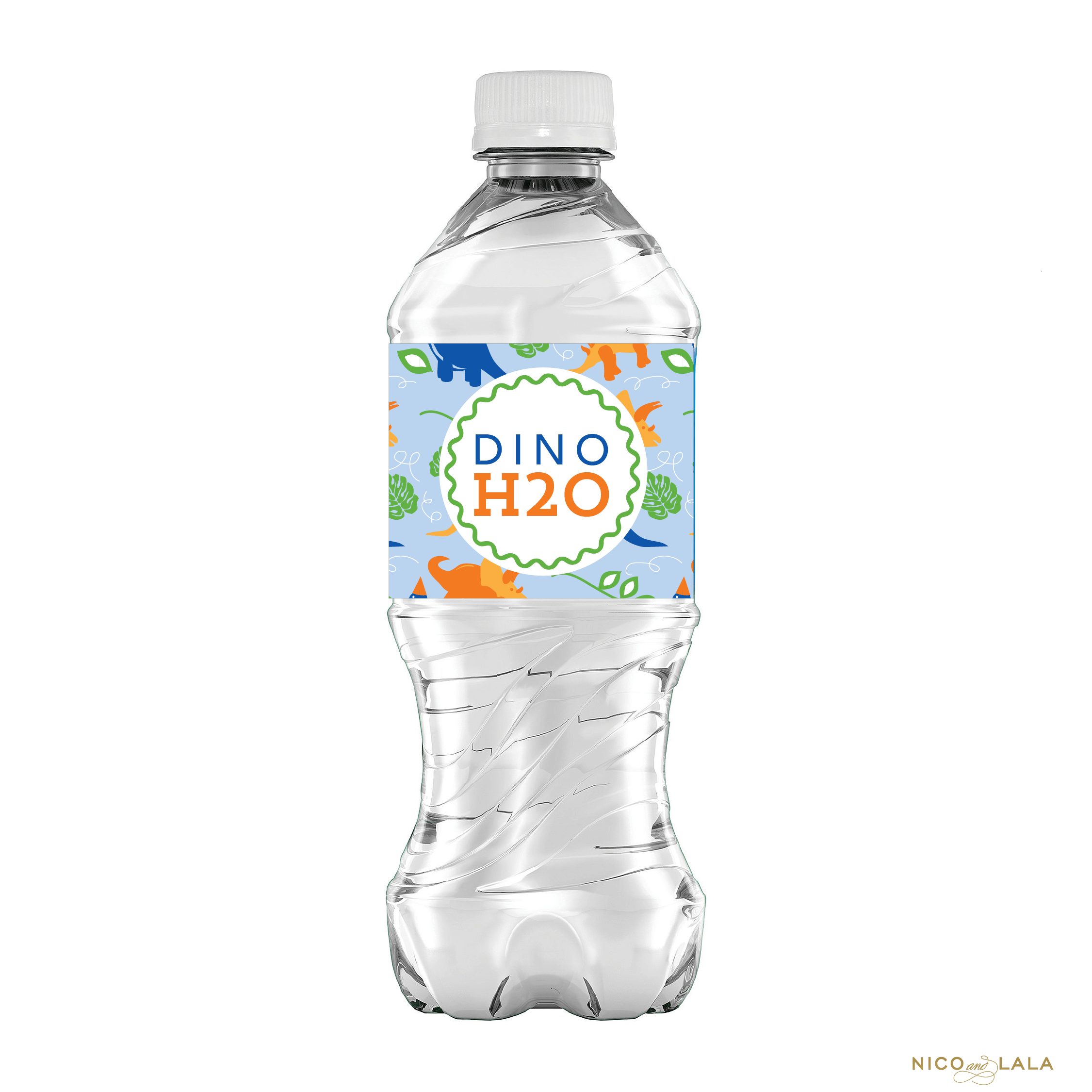 Dinosaur Birthday Water Bottle Labels