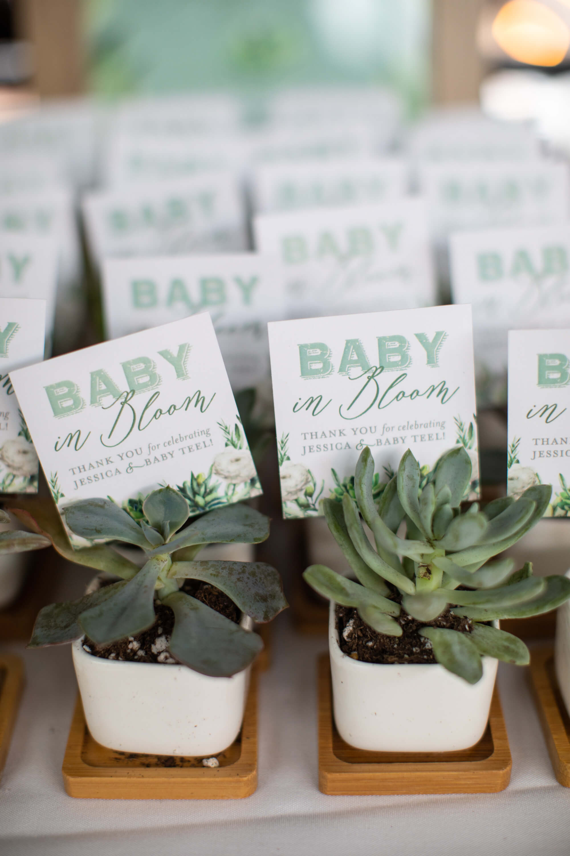 Succulent favor for baby shower