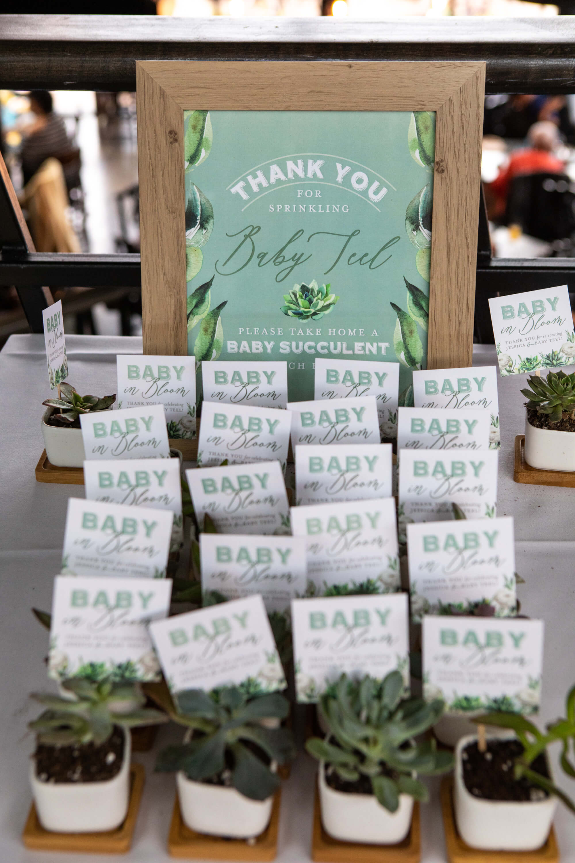 Succulent baby shower party favors