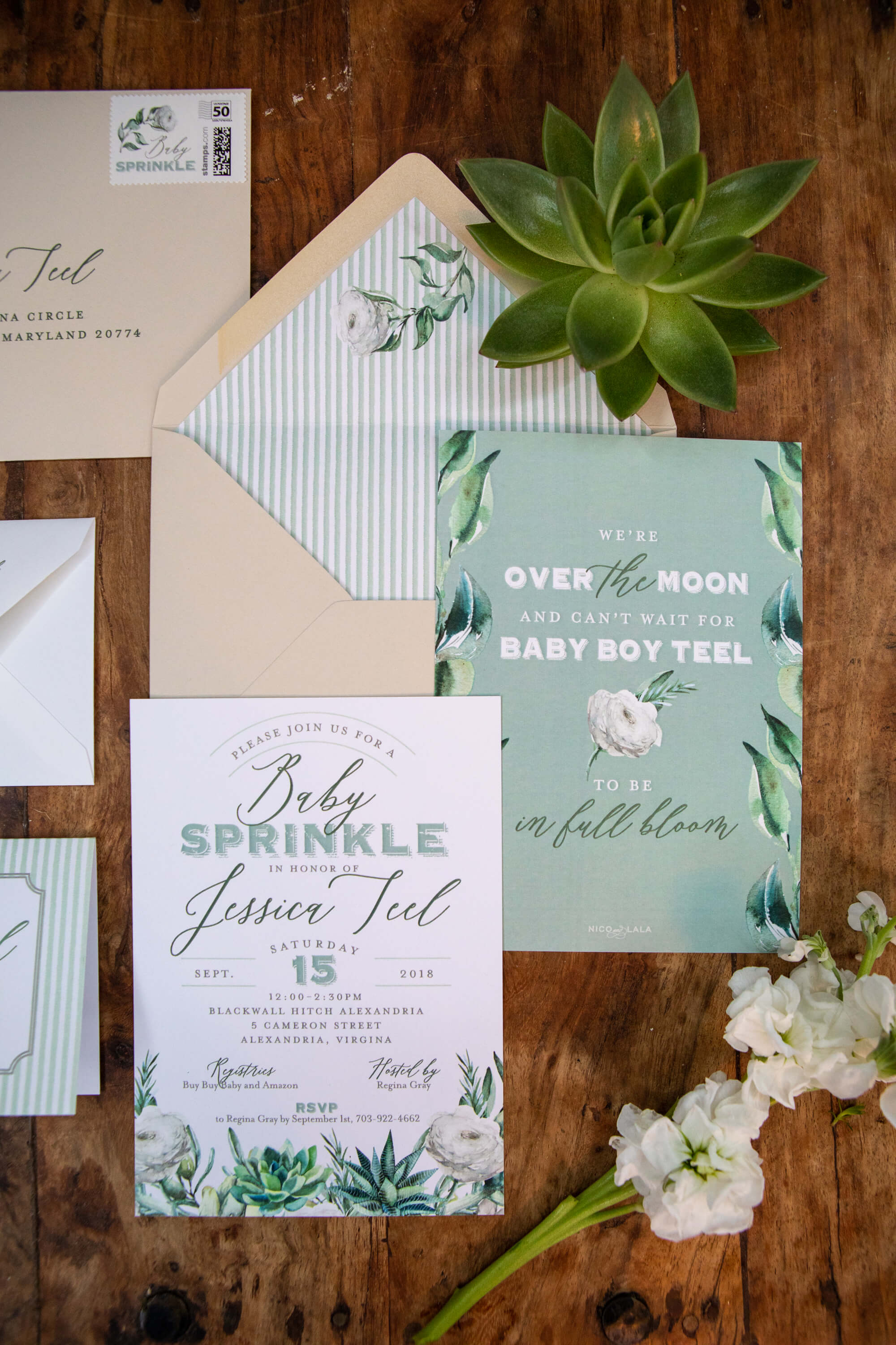 Boho chic succulent baby shower invitations